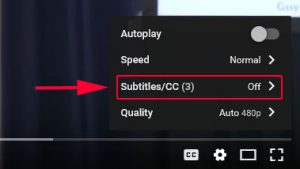 settings menu on youtube videos