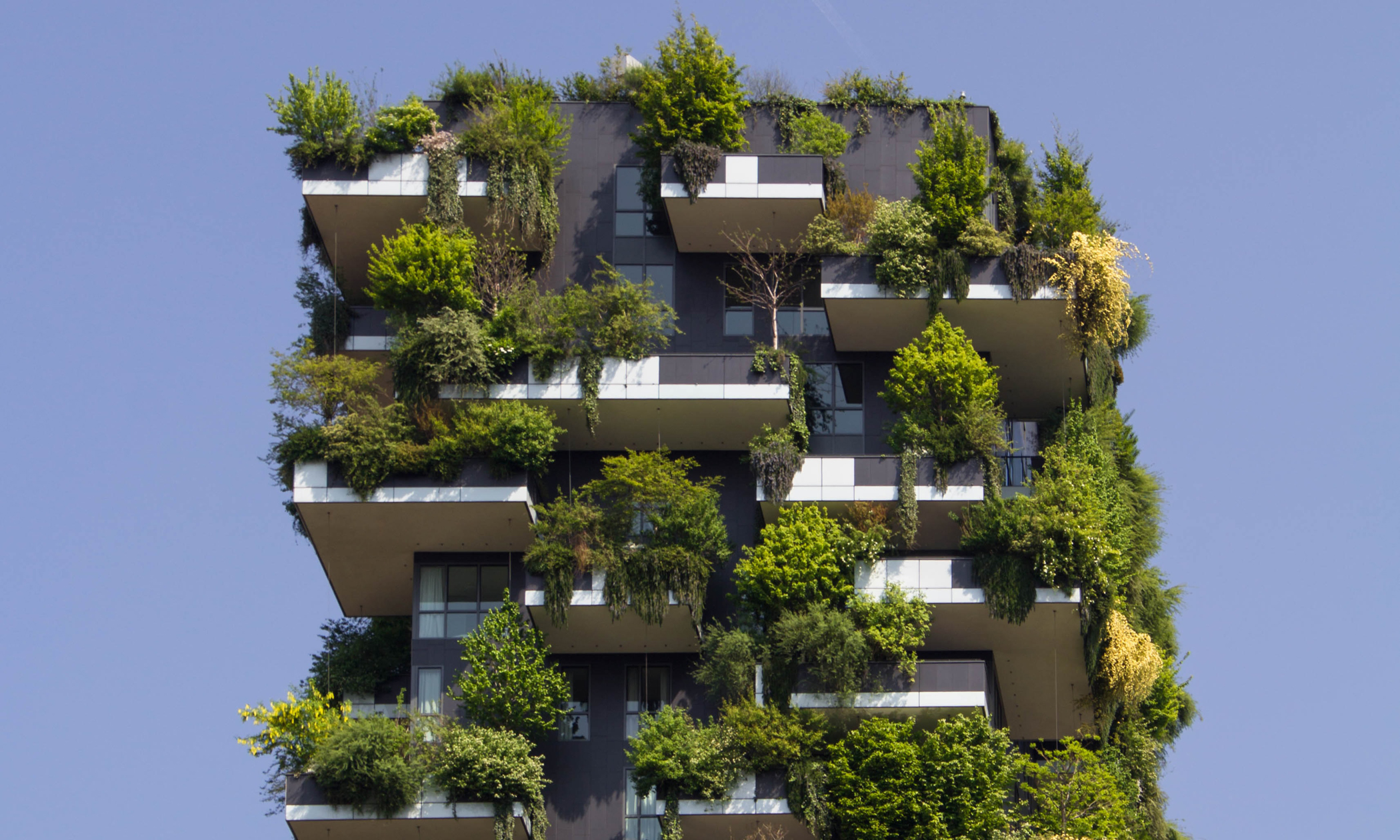 Image by Victor Garcia - an apartmenr building covered in green plants