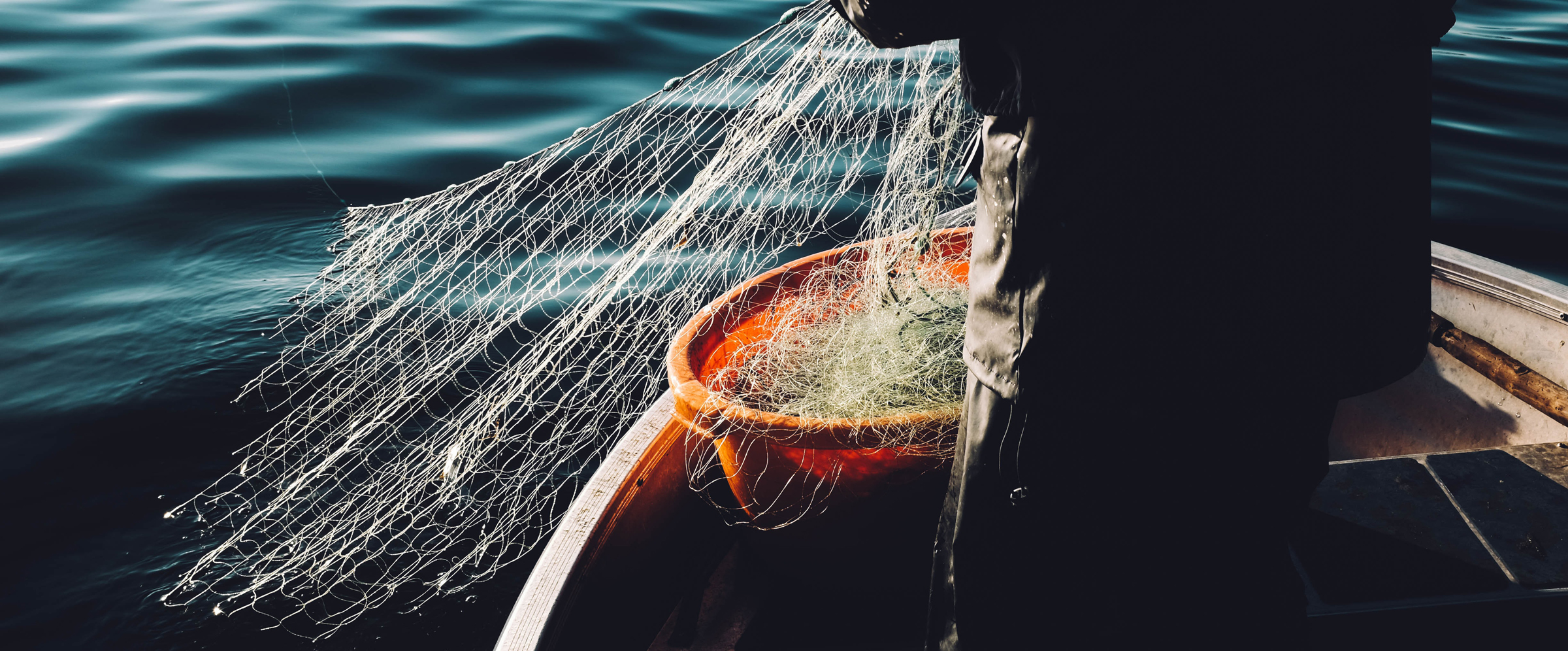 Image by Fredrik Öhlander: a fishing net being pulled from the sea into a large bucket on a boat.